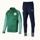 Tuta Calcio Palmeiras 2018 2019 Verde